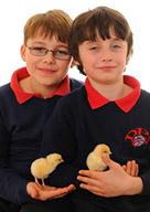 schools ewan and william